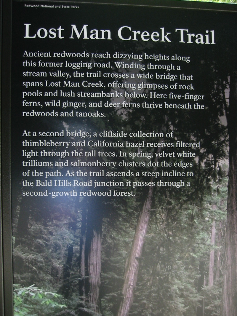 lost creek single men Michigan - land of the great lakes, endless freshwater coastline, and economic opportunity.