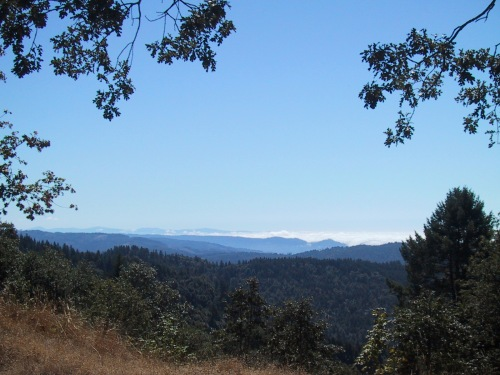 View from the east ridge at Lacks Creek.